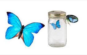 Электронная бабочка