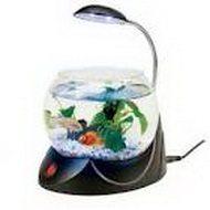 Мини аквариум для релаксации