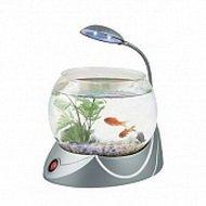 Настольный аквариум для релаксации