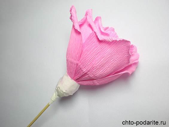 Чашечка бутона розы, обернутая скотчем
