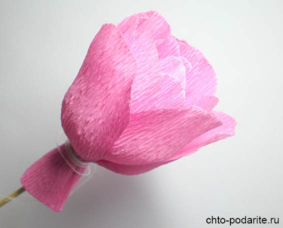 Расправляем лепестки розы из бумаги