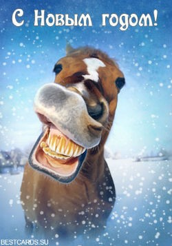 Открытка «С Новым годом!» с лошадью