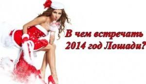 В чем встретить Новый год 2014