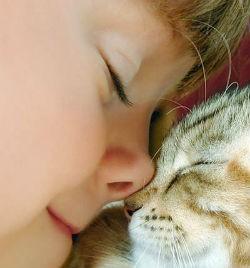 Котенок и девочка