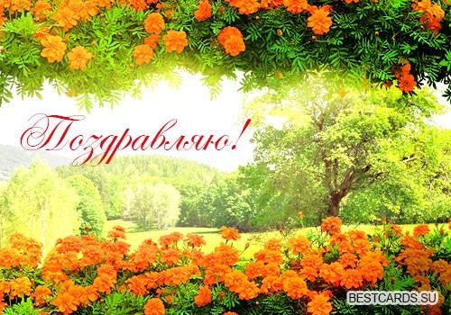 """Виртуальная открытка для форума """"Поздравляю!"""" с цветами"""