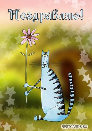 """Виртуальная открытка для форума """"Поздравляю!"""" с котом и цветочком"""