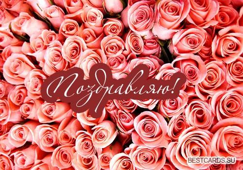 """Виртуальная открытка для форума """"Поздравляю!"""" с красными розами"""