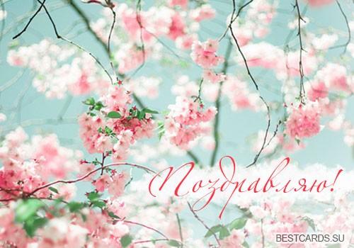 """Виртуальная открытка для форума """"Поздравляю!"""" с весенними цветочками"""