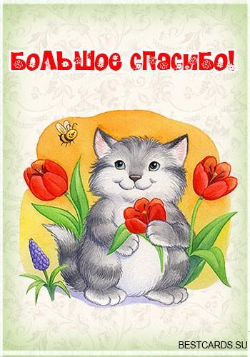 """Виртуальная открытка для форума """"Большое спасибо!"""" с котом, тюльпанами и пчёлкой"""