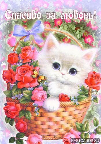 """Виртуальная открытка для форума """"Спасибо за любовь!"""" с котёнком в корзине"""