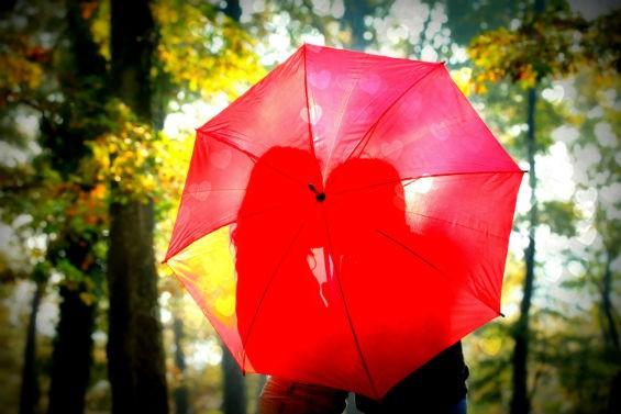 Можно ли дарить зонт?