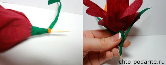 Обматываем стебель зеленой гофрированной бумагой и приматываем листики