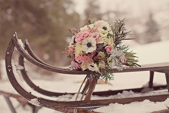 цветы змой