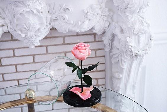 роза с колбой