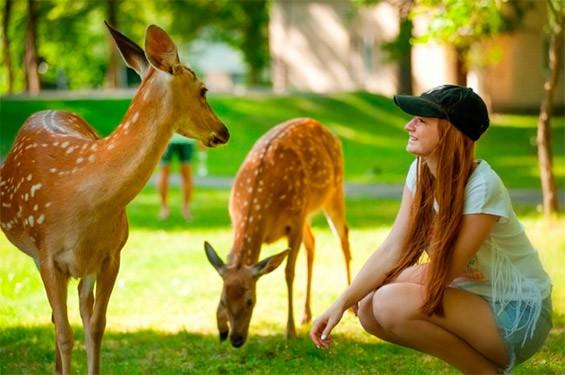 девушка в контактом зоопарке