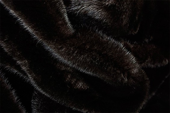 Мех Blackglama